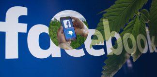 Facebook Hemp